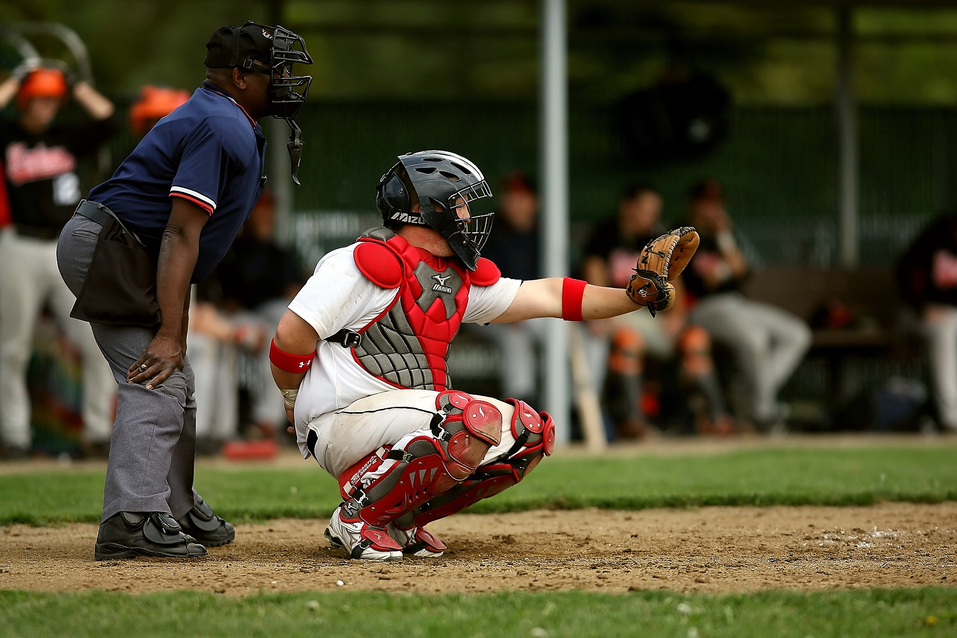 Strike Zone Misconceptions Baseball Rules Academy